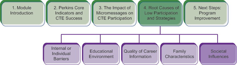 Course structure diagram, highlighting the fifth and final subtopic of section 4: societal influences